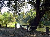 Welcome to Merced River RV Resort