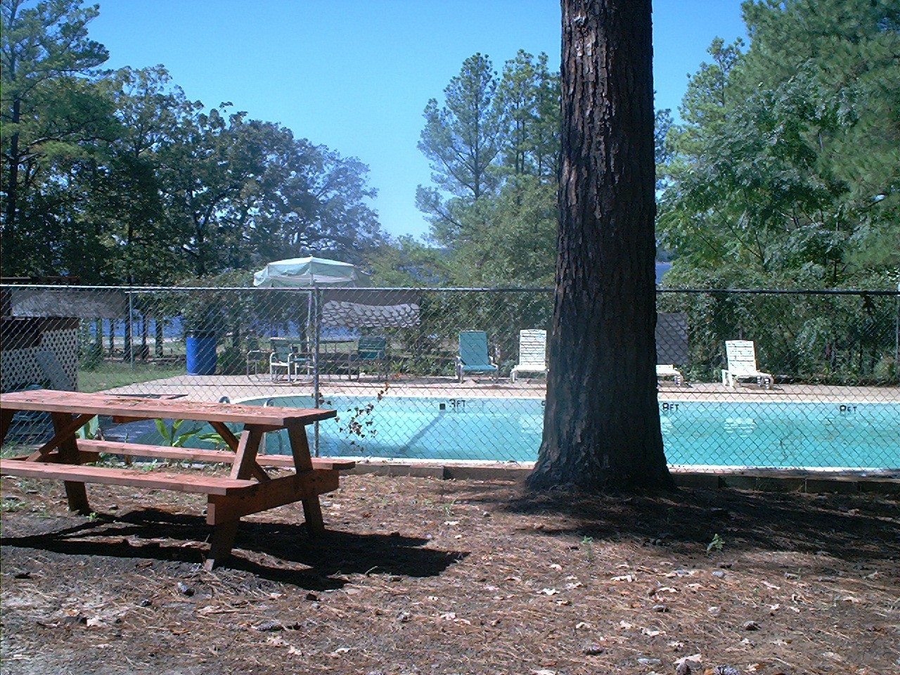 Camping Com Palestine Pines Rv And Campground